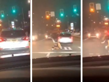 She Twerked In The Street..Then Her Body Kept Hitting The Concrete