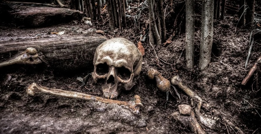Human Skelton Found Sitting On Couch Inside Abandoned Home In Detroit