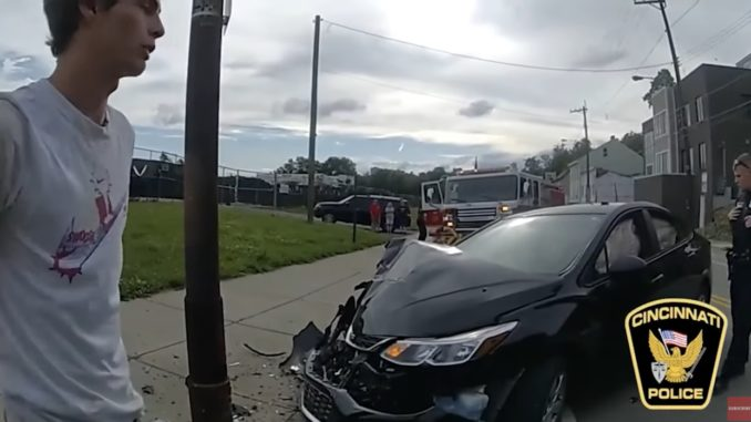 Man Crashes His Car Into A Pole After A Cicada Hits Him In The Face