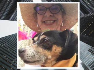 60-Year-Old Woman Holding Her Dog Jumps To Her Death From High Rise Building in NYC