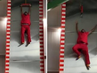 Grown Man Screams to the Top of His Lungs and Refuses to Go Down Slide With 32-Foot Drop
