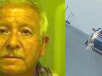 Heartbreaking Viral Video Shows 68-Year-Old Man Abandoning Dog On The Side of the Road