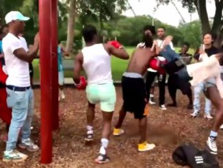 Man Gets Hit So Hard He Knocks A Little Girl Out Her Swing