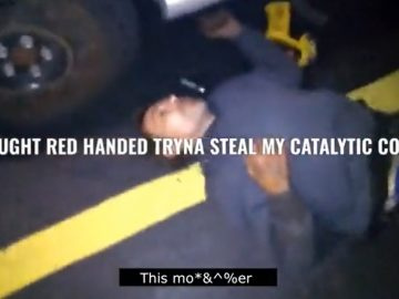 Buddy Gets Put to Sleep After Getting Caught Stealing Guy's Catalytic Converter