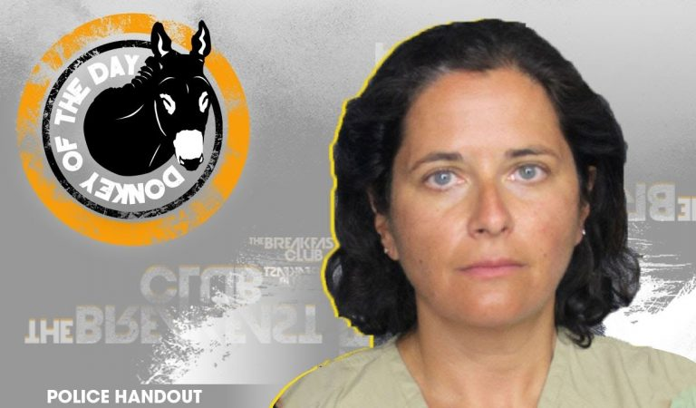 Donkey of The Day: Chicago Woman Arrested in Florida for Making False Bomb Threat After Arriving Too Late for JetBlue Flight