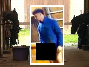 Teen Reportedly Caught on Camera Raping Horse In Boston; Indicted