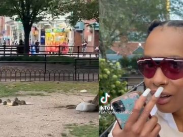 Tourist Is In Shock After She Spots NYC Rats Acting Like They Are Squirrels