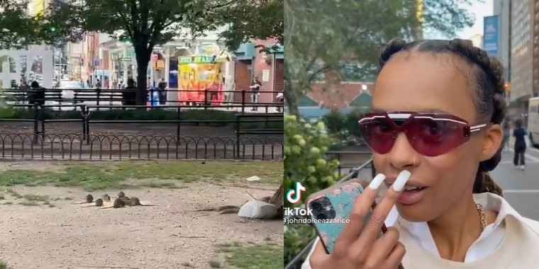Viral Video Shows Detroit Woman In Shock When She Spots NYC Rats Acting Like They Are Squirrels