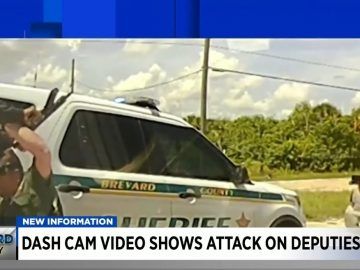 Video Shows Deadly Shootout Between Florida Deputies and 38-Year-Old Man